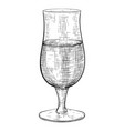 beer glass hand drawn sketch vector image