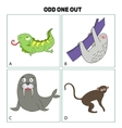 Odd one out child game vector image vector image