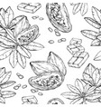 seamless pattern with hand drawn chocolate cocoa vector image