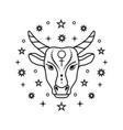 taurus zodiac sign vector image