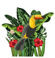 toucan with flowers and tropical leaves plants vector image vector image
