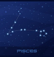 constellation pisces astrological sign vector image vector image