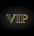 golden vip party premium card vector image vector image