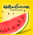 hello summer inscription on the background of vector image