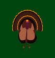 in flat style of turkey vector image vector image