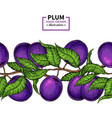 plum branch seamless border hand drawn isolate vector image vector image