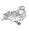 Zentangle stylized mandarine duck vector image vector image