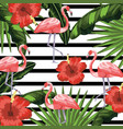 flamingos with flowers and plants leaves vector image vector image