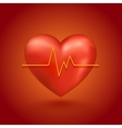 Healthy heart beat vector image
