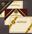 set of elegant templates of diploma lace ornament vector image vector image