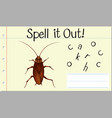 spell it out cockroach vector image
