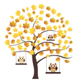 tree fall owl vector image vector image
