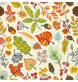 Autumn leavesberriespine branches seamless vector image