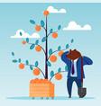 bear dig shovel dollar tree dollar investment vector image vector image
