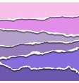 Colorful violet set of torn paper banners for vector image vector image