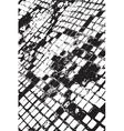Distress Mosaic Texture vector image vector image