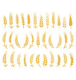 hand drawn set of yellow wheat ears icons vector image