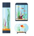 transparent aquarium habitat vector image