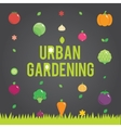 Urban gardening with vegetables icons set seeds vector image vector image