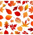 Autumn red and orange leaves pattern vector image
