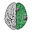 brain and motherboard vector image vector image