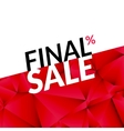 Final sale banner background Promotional vector image vector image