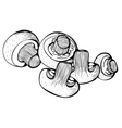 Monochrome drawing of champignons mushrooms vector image