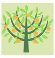 Orange tree vector image