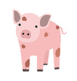 pink pig or piglet isolated on white background vector image