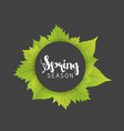 spring season letter and green leaves black gray vector image vector image