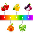 vegetables around rainbow strip isolated vector image vector image