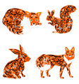 animal fox hare squirrel vector image vector image