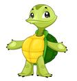 Baby turtle vector image vector image