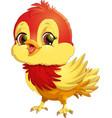 bright bird pokemon vector image