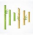 realistic 3d detailed green and brown bamboo set vector image