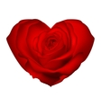 Red rose in the shape of heart EPS 10 vector image