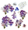 set of flowers in watercolor style vector image vector image