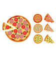 traditional pizza elements whole hot pizza slices vector image