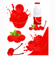 Berry products vector image vector image
