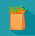 carrots in shopping bag vector image vector image
