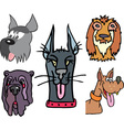 Set of funny dog heads cartoon vector image