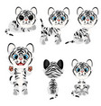 striped gray tiger cub in different poses vector image