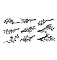 tree branches with leaves isolated vector image vector image