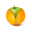 Unzipped orange with green apple Fruit and diet vector image vector image