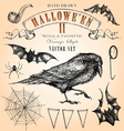 Vintage halloween set vector | Price: 1 Credit (USD $1)
