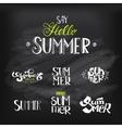 Hello Summer Lettering set at chalkboard vector image
