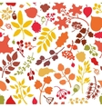 Autumn leavesbranchesberries seamless pattern vector image