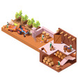 isometric winery and wine making vector image vector image