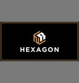 nr hexagon logo design inspiration vector image vector image