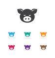 of zoo symbol on pork icon vector image vector image
